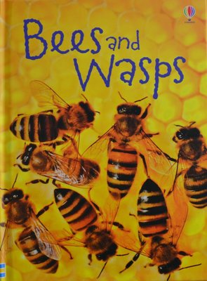 Bees and Wasps - James Maclaine